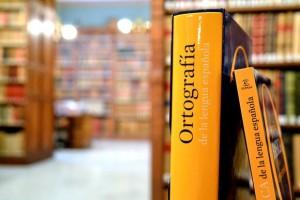 Ortografía académica 2010